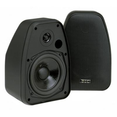 5 1/4 in. 150-Watt 2-Way Indoor/Outdoor Speaker