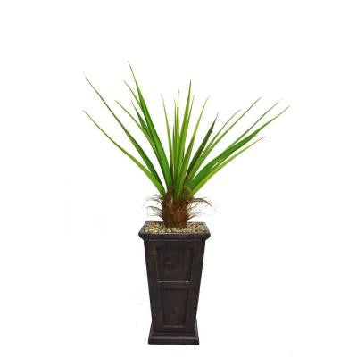 63 in. Tall Agave Plant with Cocoa Skin in 16 in. Fiberstone Planter