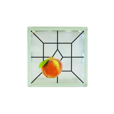 8 in. x 8 in. x 4 in. Peach Art Glass Blocks