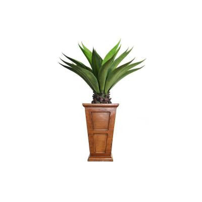 51 in. Tall Giant Aloe in Planter