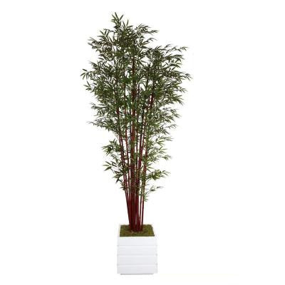98 in. Tall Harvest Bamboo Tree in 14 in. Fiberstone Planter