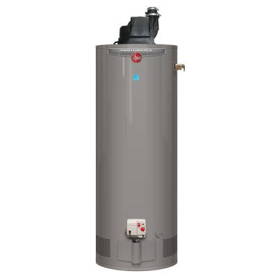 Performance 50 Gal. Tall 6 Year 42,000 BTU Power Vent Liquid Propane Gas Water Heater