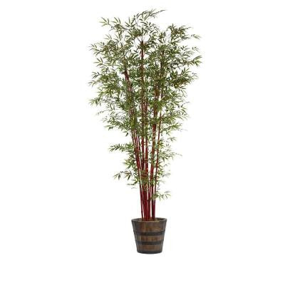 100 in. Tall Harvest Bamboo Tree in Planter