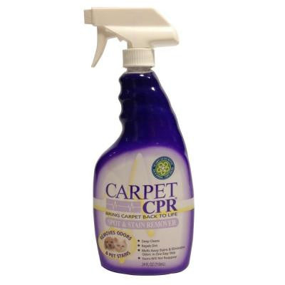 24 oz. Spot and Stain Remover