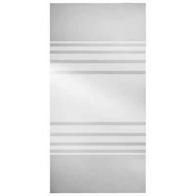 60 in. Sliding Shower Door Glass Panel in Transition