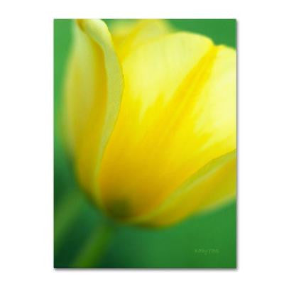 22 in. x 32 in. Hint of a Tulip Canvas Art