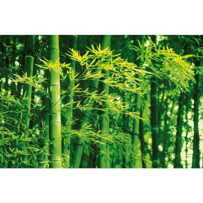 45 in. x 0.25 in. Bamboo in Spring Wall Mural