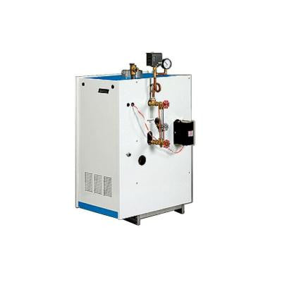 Natural Gas Steam Boiler 100,000 BTU Input 61,000 BTU Output 254 Sq. Ft. of Steam with Intermittent Electronic Ignition