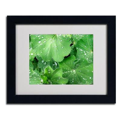 11 in. x 14 in. Water Droplets Matted Framed Art