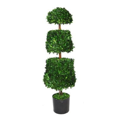 12.5 in. x 12.5 in. x 44 in. Preserved Natural Boxwood Cone Topiary