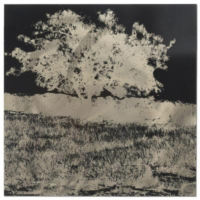 Brevium 22 in. x 22 in. Tree Black and White Negative Metal Wall Art