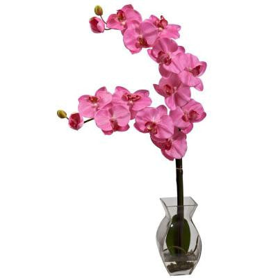 Phalaenopsis Orchid with Vase Arrangement in Dark Pink