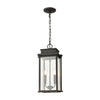 Braddock 2-Light Outdoor Pendant in Architectural Bronze with Seedy Glass Enclosure