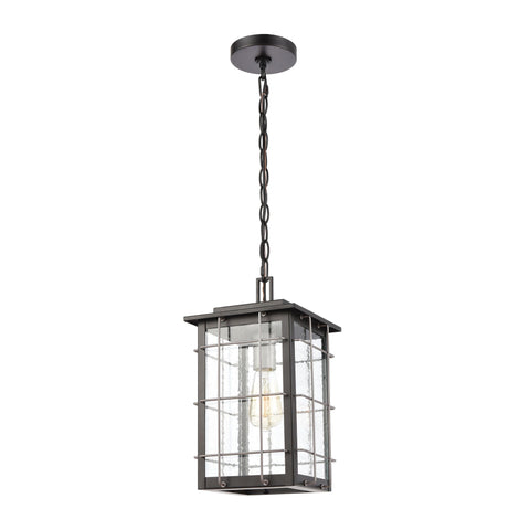 Brewster 1-Light Hanging in Matte Black with Seedy Glass Outdoor Elk Lighting