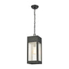 Angus 1-Light Outdoor Pendant in Charcoal with Seedy Glass Enclosure