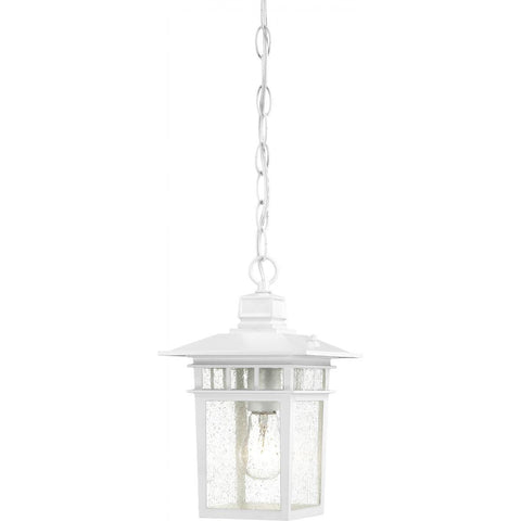 "Nuvo Lighting Cove Neck 1 Light 12"" Outdoor Hang with Clear Seed Glass 60/4954"
