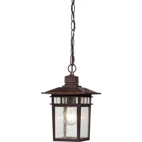 "Nuvo Lighting Cove Neck 1 Light 12"" Outdoor Hang with Clear Seed Glass 60/4955"