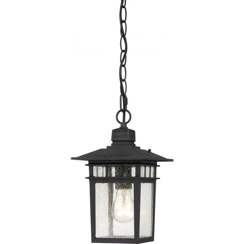 "Nuvo Lighting Cove Neck 1 Light 12"" Outdoor Hang with Clear Seed Glass 60/4956"