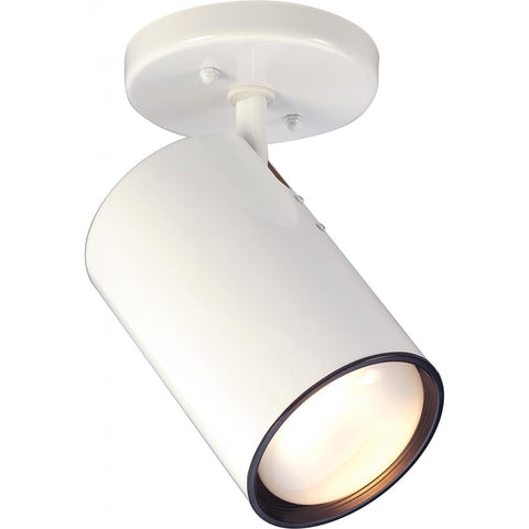 Nuvo Lighting 1 Light R30 Straight Cylinder SF76/418