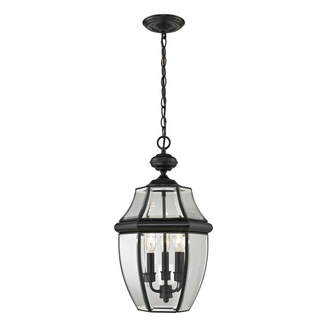 Ashford 3-Light Hanging Lantern in Black - Large Outdoor Lighting Thomas Lighting