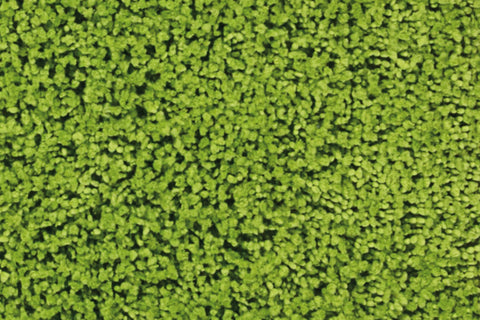 Zen Wasabi Shag Area Rug - 2 Size Options