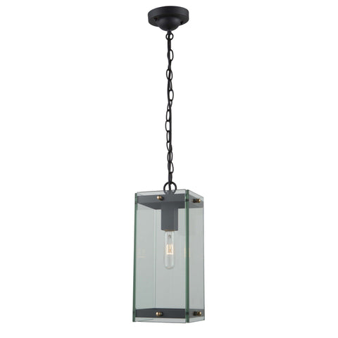 Bradgate 6.75 in. wide Black and Brass Outdoor Pendant