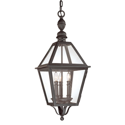 Townsend 3 Light Hanging Lantern Large - Natural Bronze Outdoor Troy