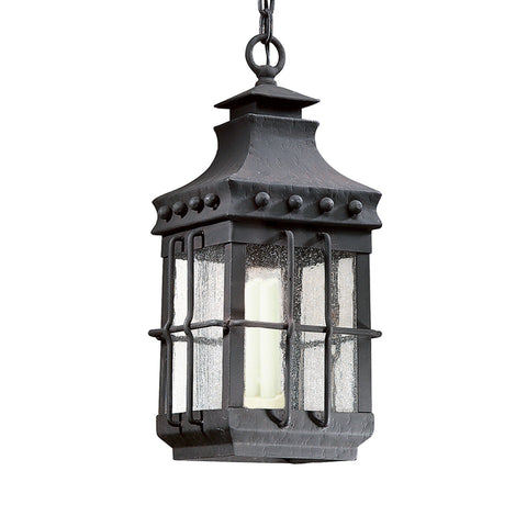 Dover 1 Light Hanging Lantern Medium - Natural Bronze Outdoor Troy