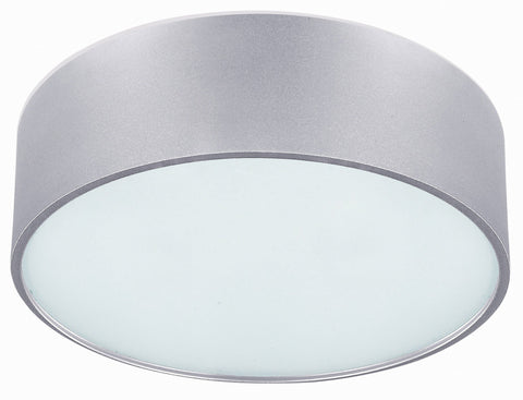 Dexter 2 Light Flush Mount - Aluminum