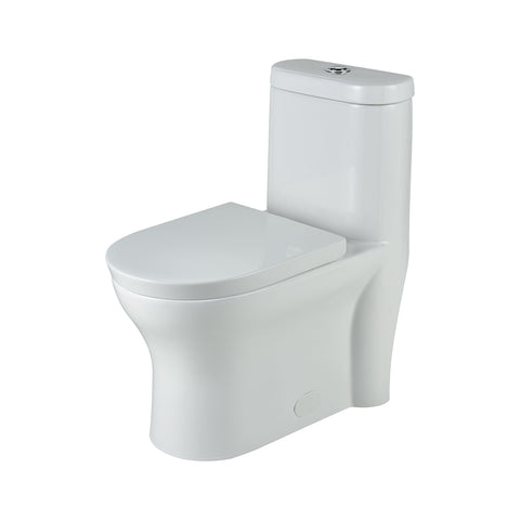 Jet Siphonic Toilet - R and T Flushing Fitting