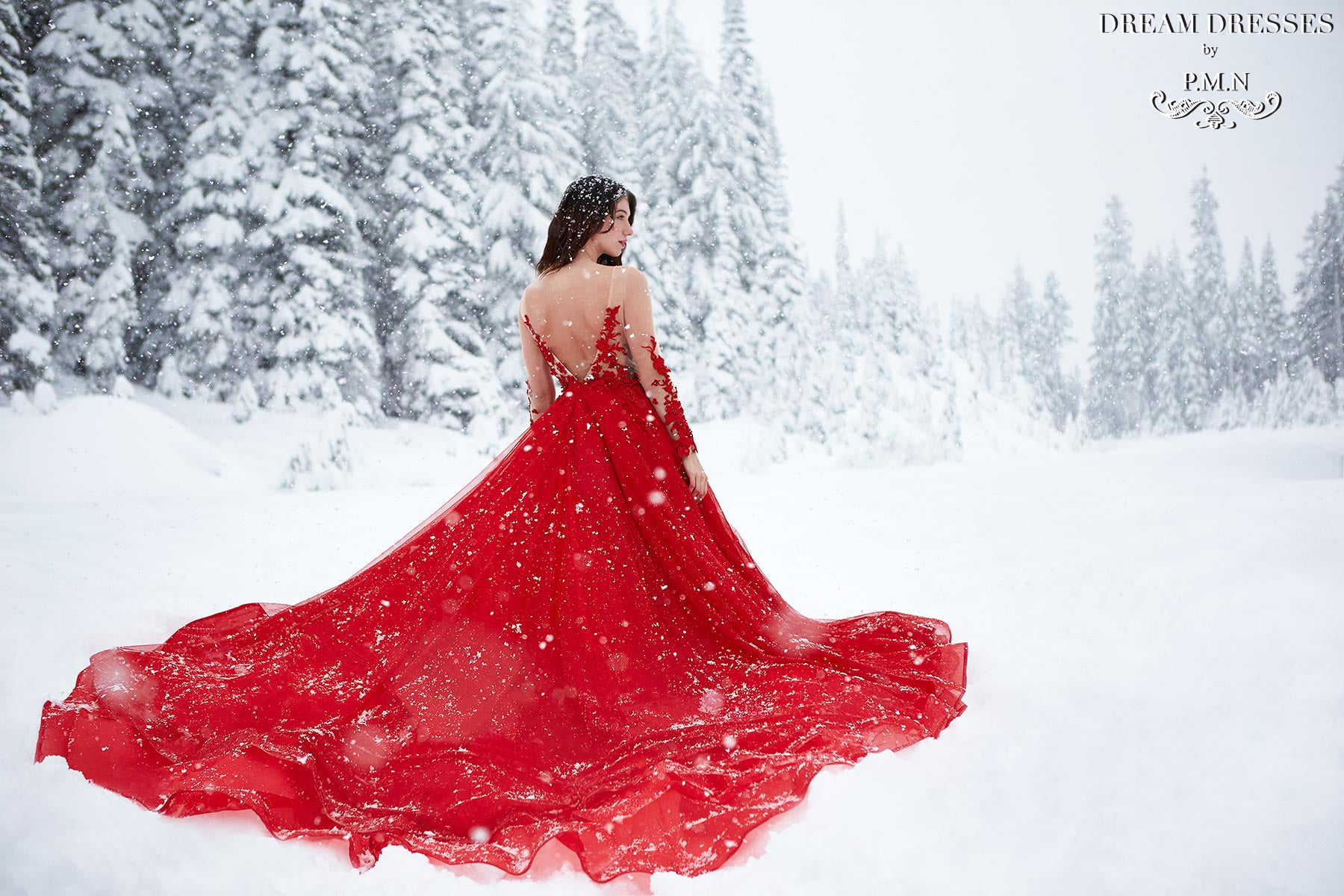 Red Wedding Dress by Dream Dresses by PMN