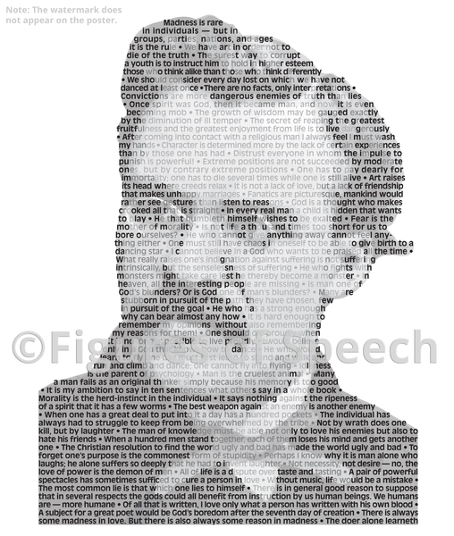 Original Nietzsche Poster in his own words. Image made of Nietzsche's quotes!