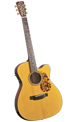 Blue Ridge BR-143CE - Jakes Main Street Music