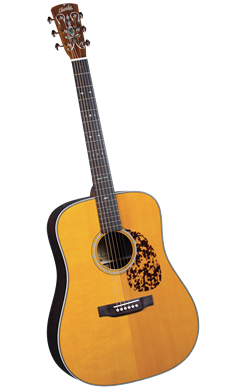 Blueridge BR-160 - Jakes Main Street Music
