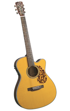 Blueridge BR-163CE - Jakes Main Street Music