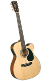 Blueridge BR-43CE - Jakes Main Street Music