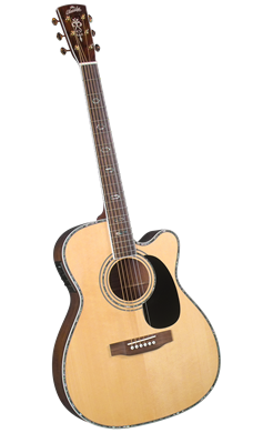 Blueridge BR-73CE - Jakes Main Street Music