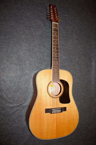 Washburn D10S/12  12-String Guitar - Used c. 2012 - Jakes Main Street Music