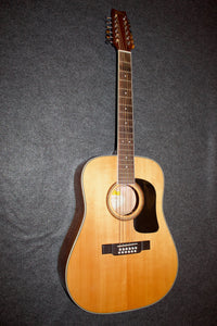 Washburn D10S/12  12-String Guitar - Used c. 2012