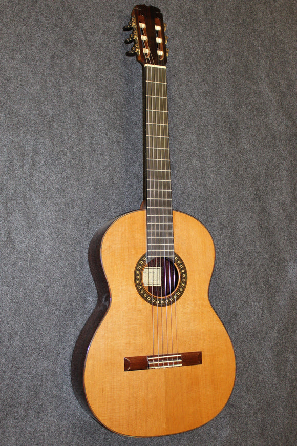 Paul Daniel McGill Classical guitar #111