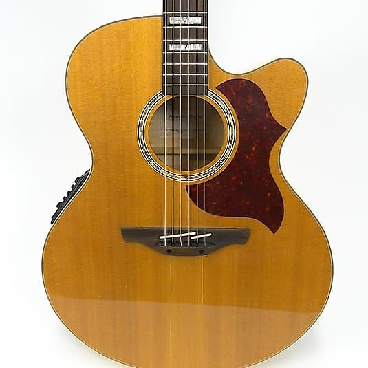 Takamine EG523SC Acoustic Guitar - USED - Jakes Main Street Music