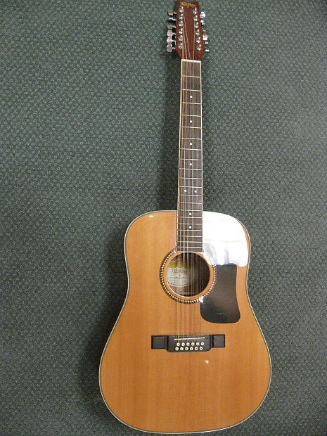 Washburn D10S/12 Used 12-String Guitar - Jakes Main Street Music