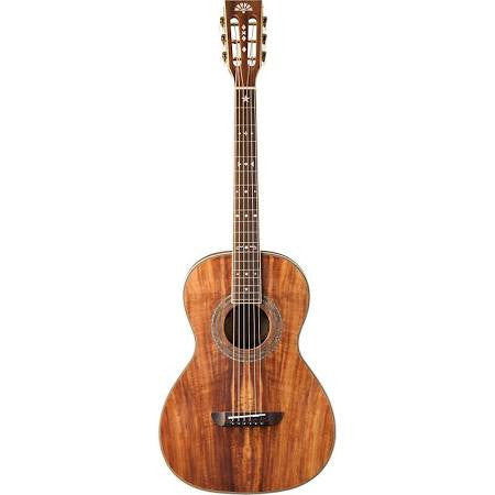 Washburn WP55NS Parlor Acoustic Guitar - Jakes Main Street Music