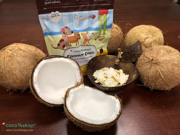 How Coconut Fiber Supports Digestive Issues