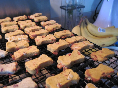 CocoTherapy Banana Apple Cranberry Coconut Biscuits