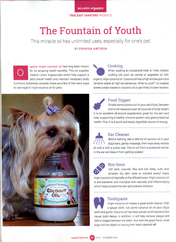 Hamptons Pet magazine article