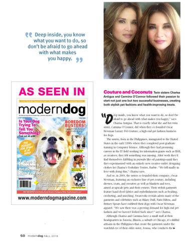 Modern Dog, Entrepeneurs article
