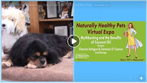 Naturally Healthy Pets Virtual Expo: Mythbusting and the Benefits of Coconut Oil