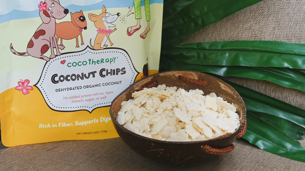 coconut for pets | coconut for dogs | coconut for cats | coconut oil for dog constipation | cat vomiting