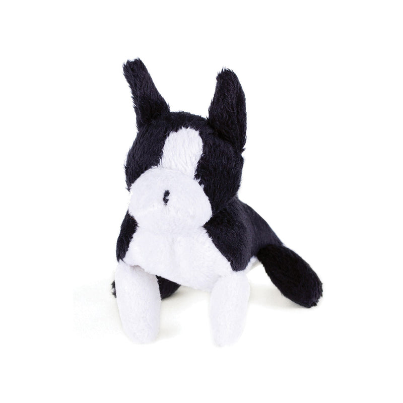 Boston Terrier Pipsqueak Toy
